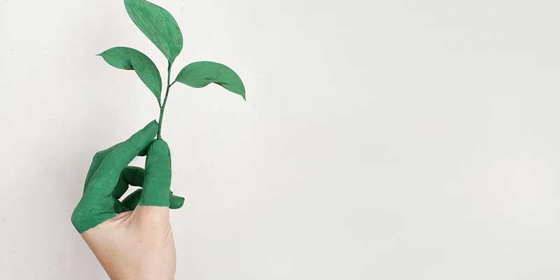Comment préserver la nature?
